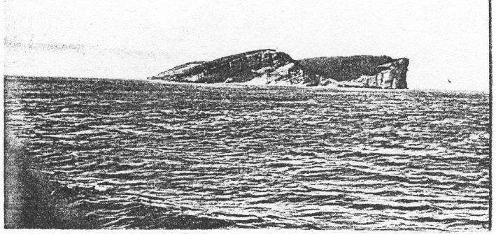 Cape Gaspe